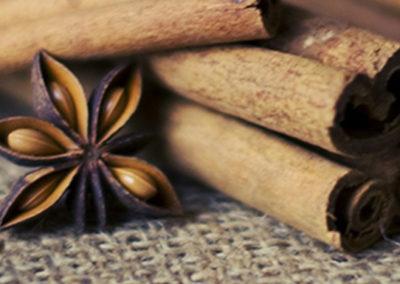 RoSana Gesundheitsblog Ayurvedische Weihnachtsbäckerei Zimt
