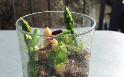 Spargelstechen – Spargel mit Quinoa