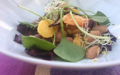 Borlettibohnensalat mit bunten Karotten, Radicchio und Postelein