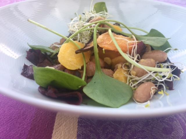 RoSana Gesundheitsblog Ayurveda Rezepte Borlettibohnesalat