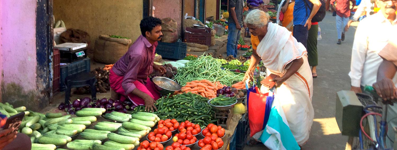 Ayurvedisches Mittagessen aus Indien – Indischer Markt