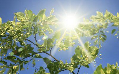 Vorsicht Sonnenstich!